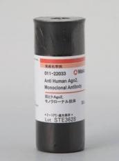 Anticuerpo monoclonal Anti-AGO2 humana