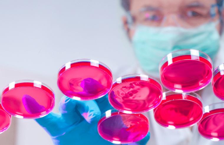 Ventajas del uso de cultivos celulares de insectos para la producción de proteínas recombinantes