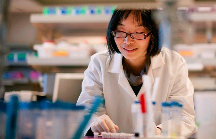 El estrés celular y la investigación de enfermedades