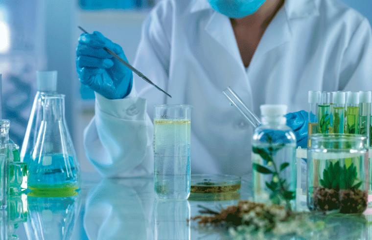 Investigación traslacional en plantas