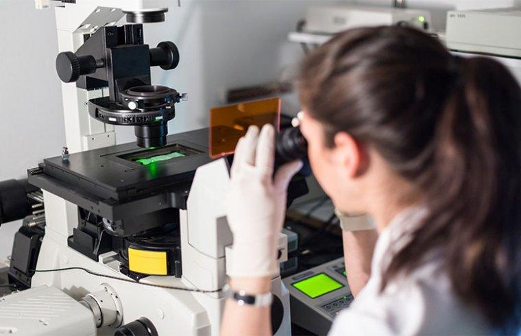 Reactivos para la detección mediante fluorescencia