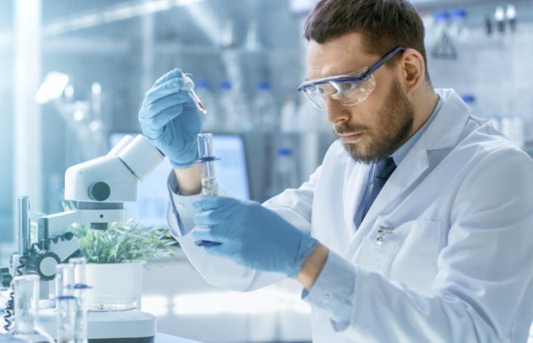 Reactivos para el estudio del metabolismo de plantas